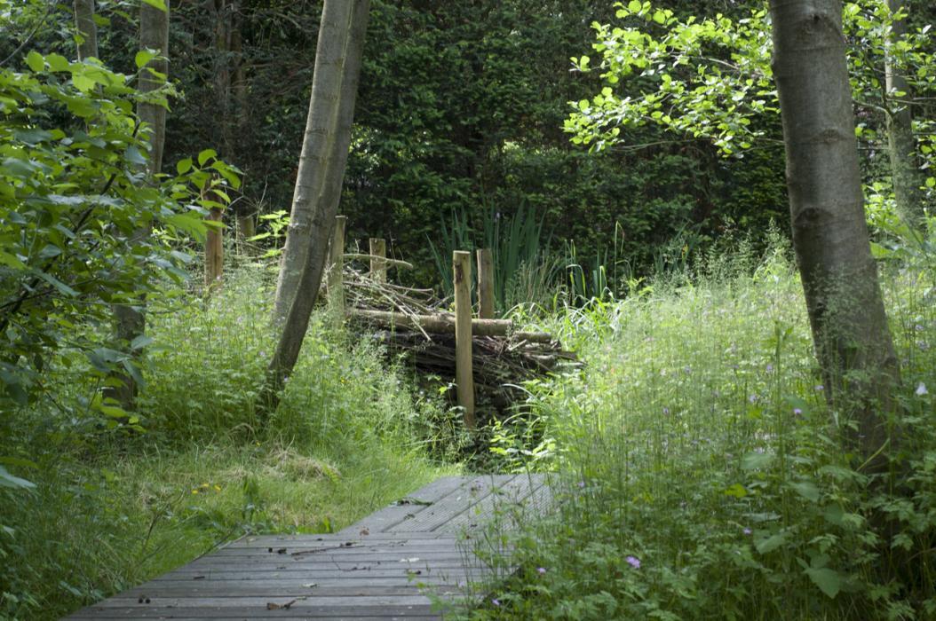 Natuurtuin met waterloop te Schilde